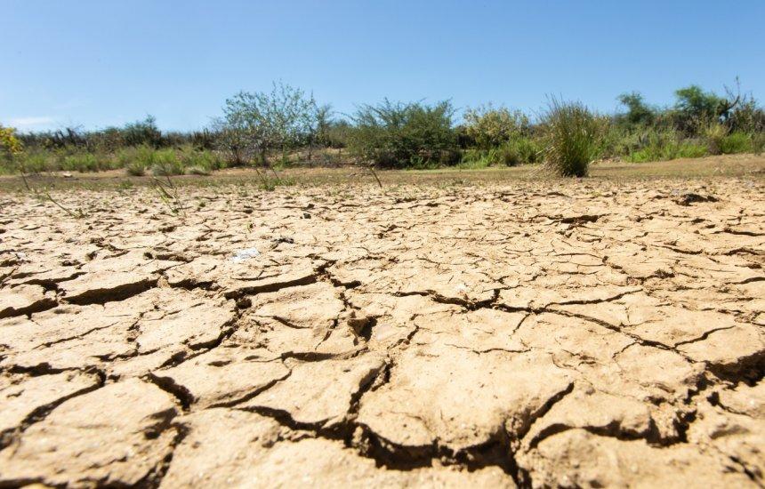 [Desertificação atinge 13% do semiárido brasileiro e ameaça regiões da caatinga]