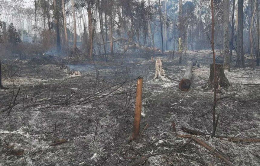 [Acre decreta estado de emergência por causa de incêndios florestais]