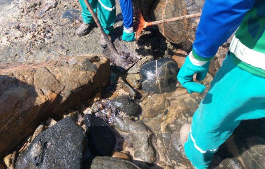 [Manchas de óleo retornam à praia de Pedra do Sal, no bairro de Itapuã]