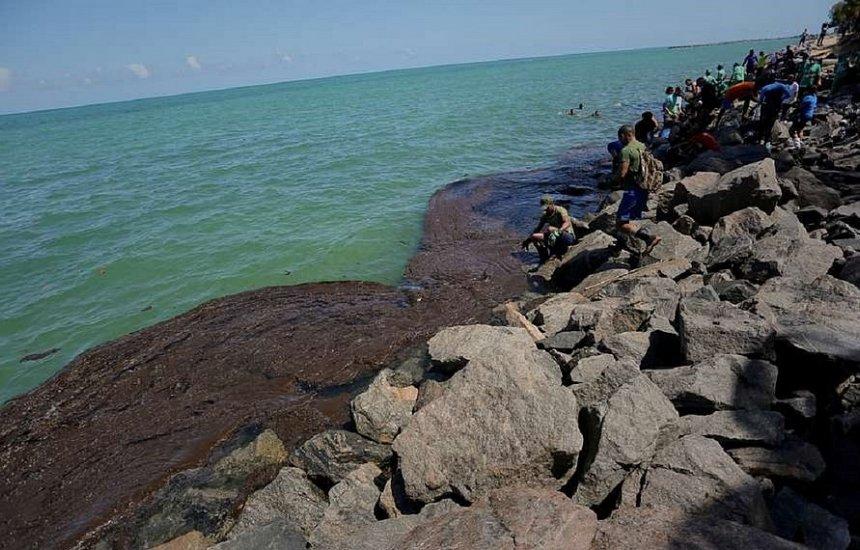 [Navio identificado pela Ufal não foi responsável por óleo na costa, diz Marinha]