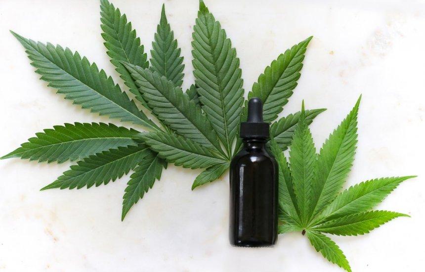 [Anvisa libera venda de produtos à base de cannabis em farmácias]