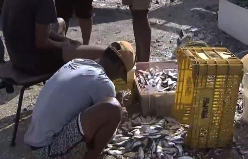 Dois meses após óleo em Salvador, pescadores ainda relatam vendas baixas