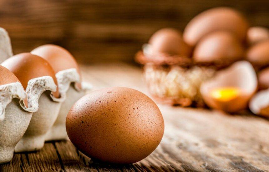 [Farinha de casca de ovo fortalece ossos e enche o corpo de cálcio; saiba preparar]
