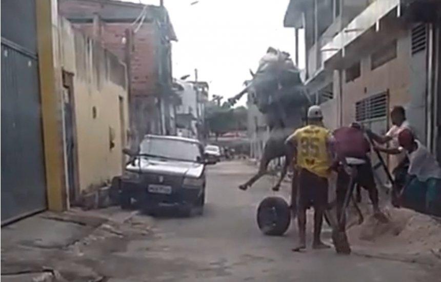 [Leitor flagra maus tratos contra animal no Novo Horizonte]