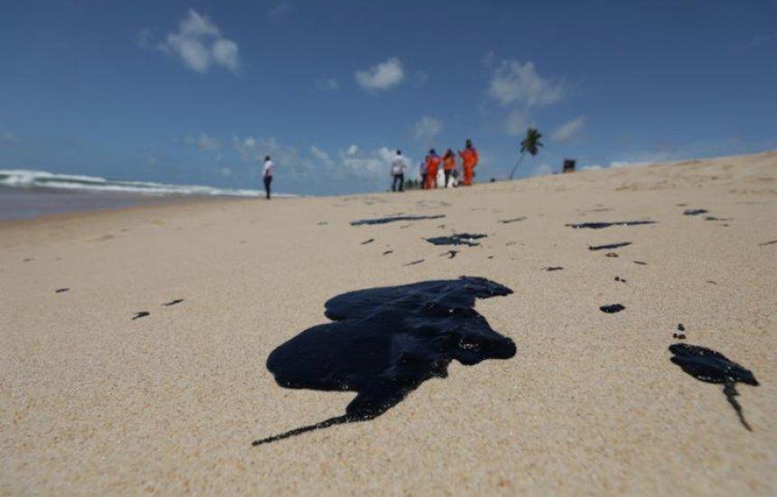 [Nova análise aponta situação do pescado na Bahia após manchas de óleo]