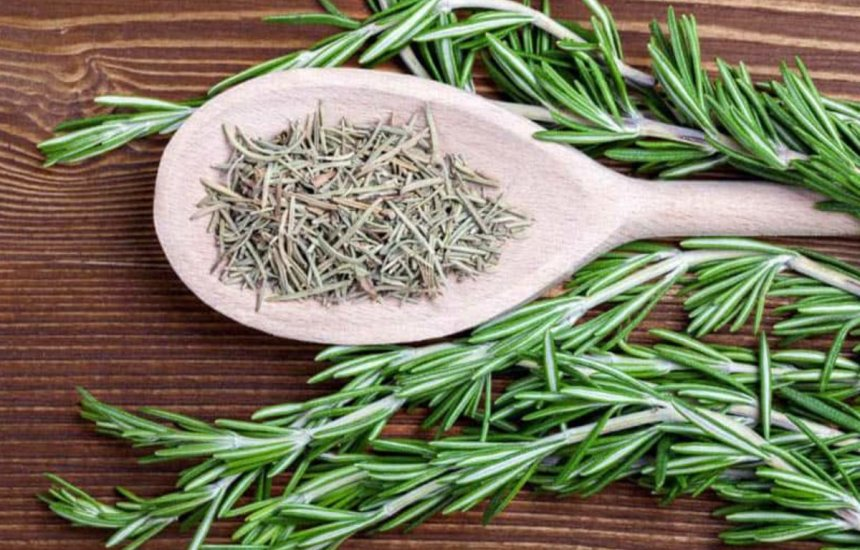 [Sabor da saúde: conheça quatro benefícios ao consumir a erva alecrim na alimentação]