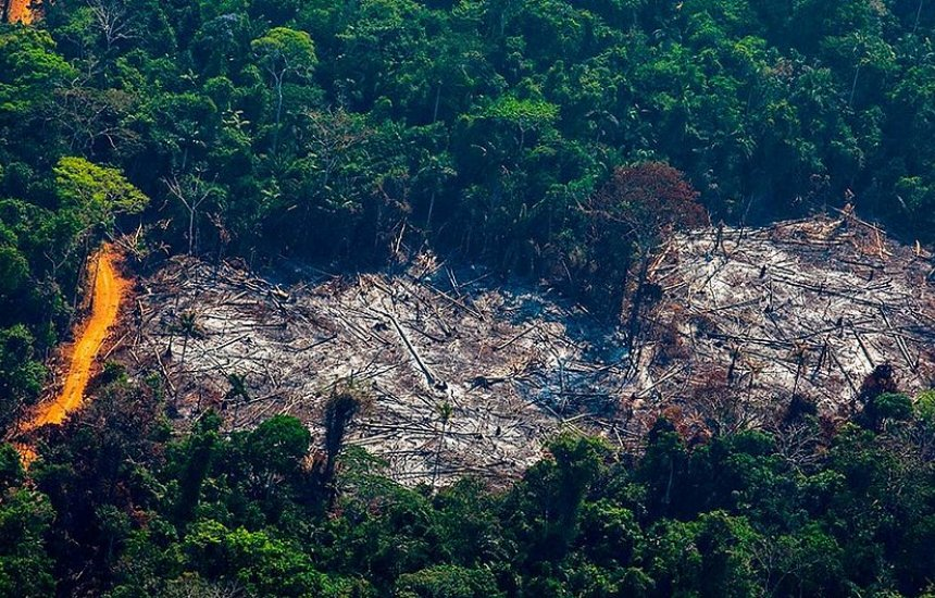 [Governo exonera responsável por monitorar Amazônia no Inpe]