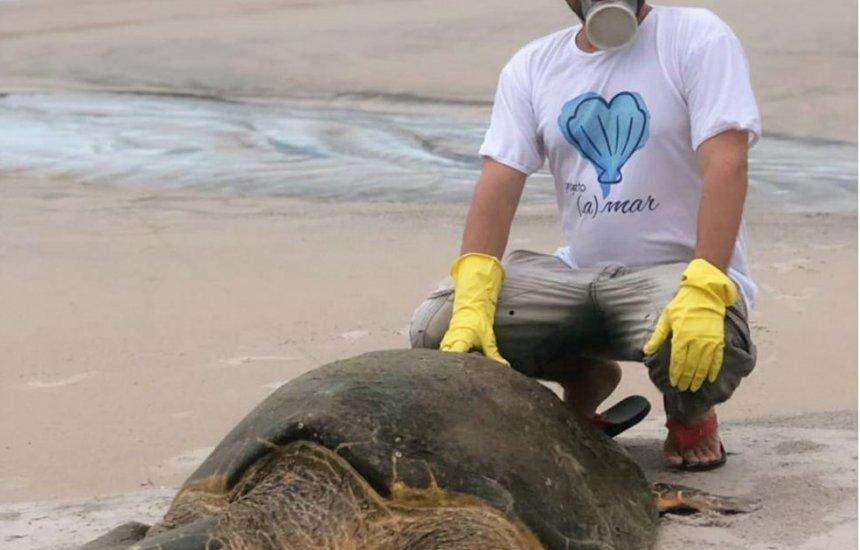 Tartaruga marinha com 1,3 metro e mais de 80 kg é resgatada após encalhar em praia