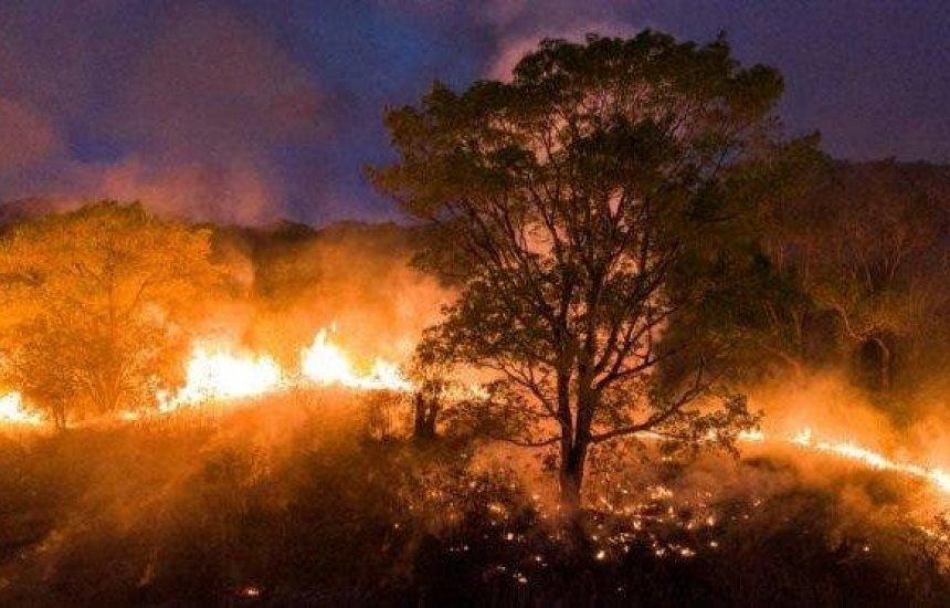 Governador pede Força Nacional no combate às queimadas no Pantanal