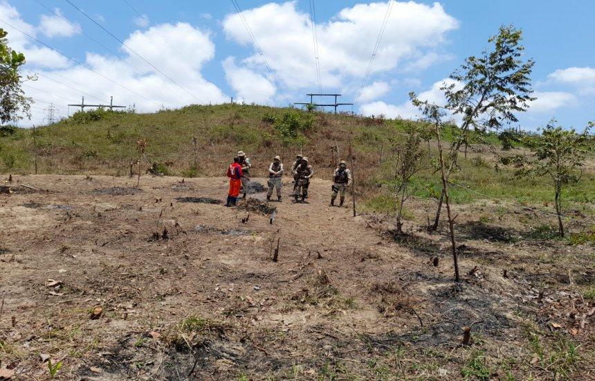 [Operação conjunta flagra desmatamento em área ambiental no entorno do Polo]