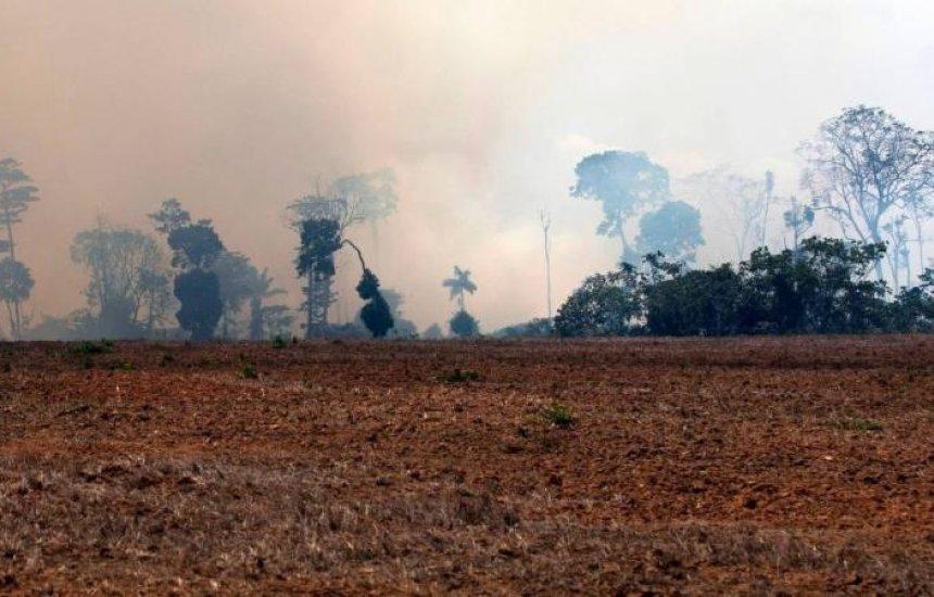 [Amazônia registra maior acumulado de focos de incêndio em 10 anos, diz Inpe]