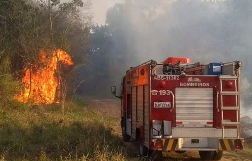 [Projeto impede atividades econômicas em área queimada até a recomposição vegetal]