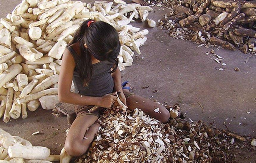 [Trabalho infantil diminuiu, mas ainda atinge 1,768 milhão, diz IBGE]