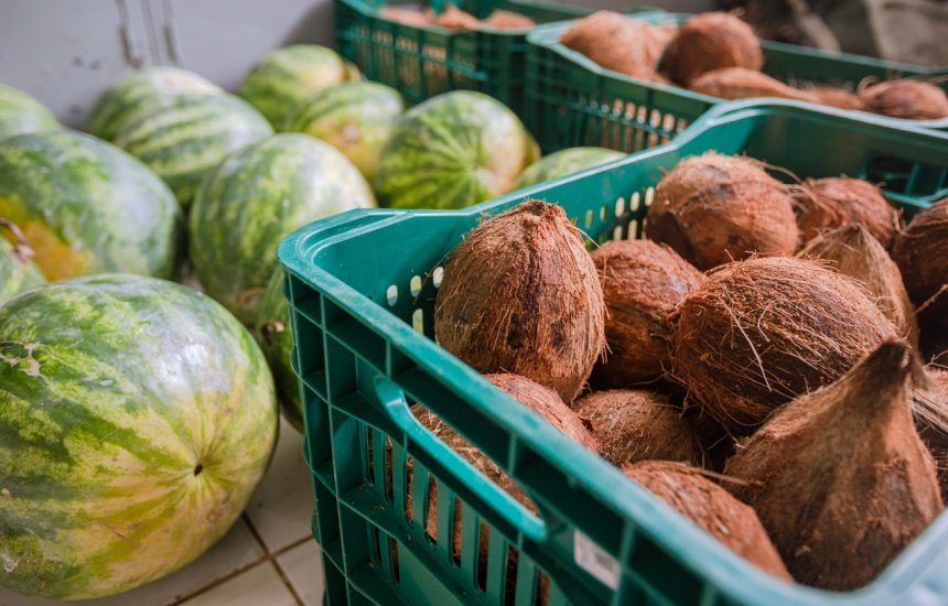 [Governo realiza compra de cerca de 6.500 quilos de produtos agrícolas]