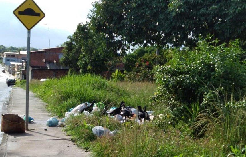 [Seu Bairro no CN: lixo atrai diversos urubus no Parque das Mangabas]
